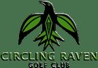 Circling-Raven-144x100